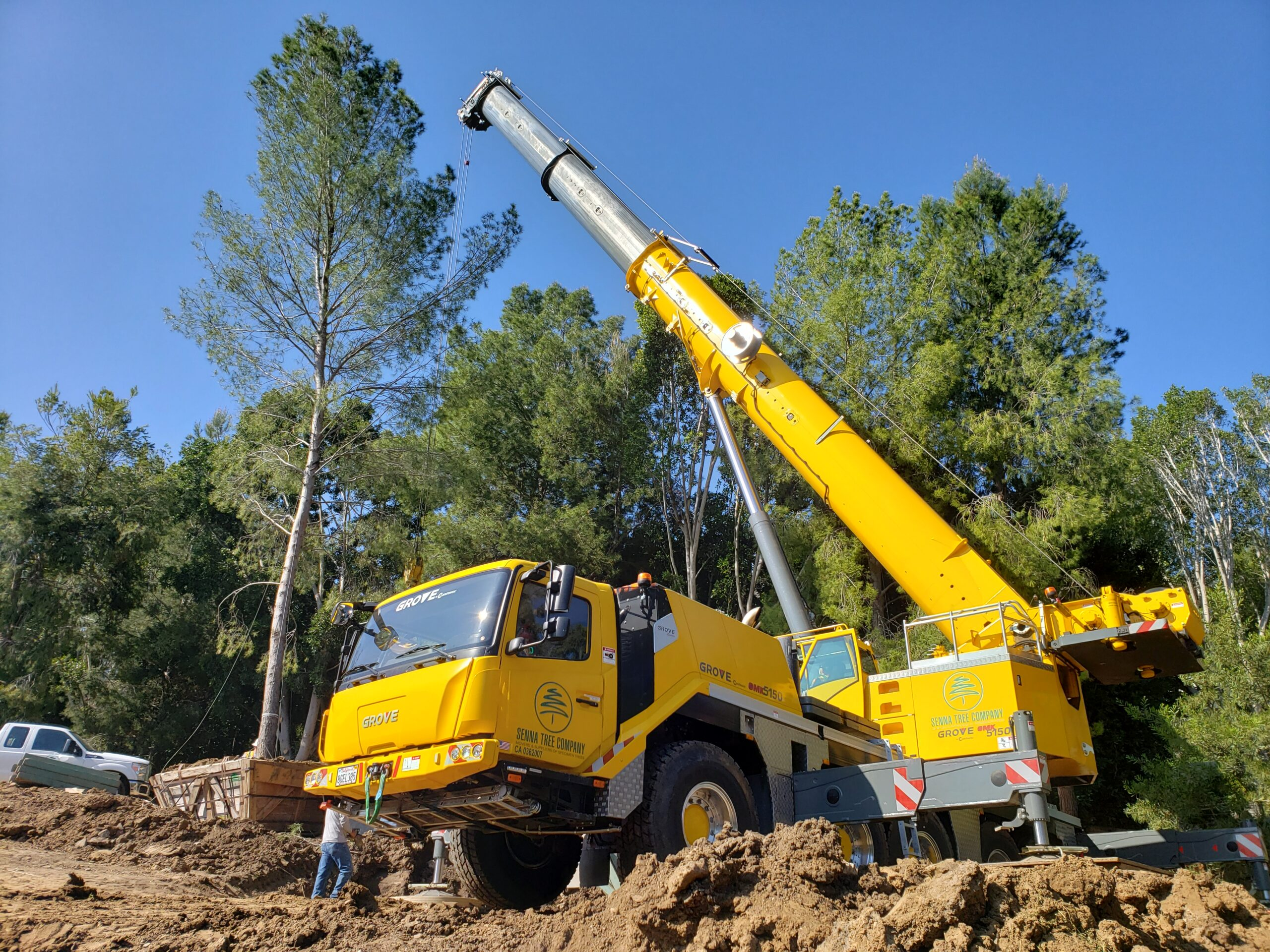 Crane and Equipment rental to move trees in the greater los angeles area
