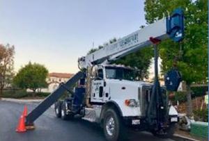 Senna Tree Crane Rental - 30 ton crane
